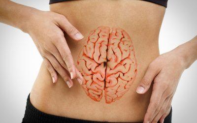 Equilibrio intestinal y su conexión con el cerebro. Curso en ISMET. Julio 2017